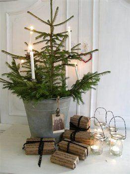 Tin bucket, small tree, and lights.