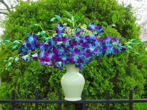 Hues of Purple and Turquoise all items :  wedding aqua lavender tiffany blue turquoise violet Bluedendro05100320pic