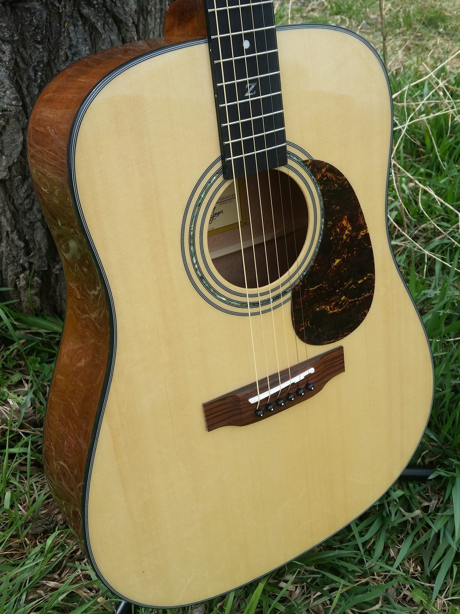 Win this Zager Acoustic Electric Guitar and Lifetime Guitar Lessons guitargiveaway