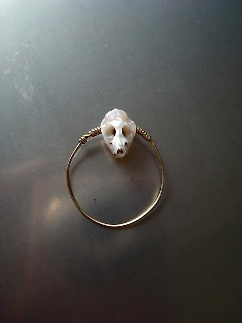 carved pearl skull ring『Meerkat Skull』 - S.NAKABA