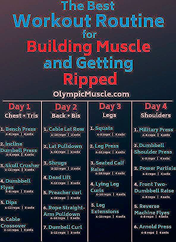Photo of Best Workout Routine for Building muscle #weighttraining Follow this 4 day worko…