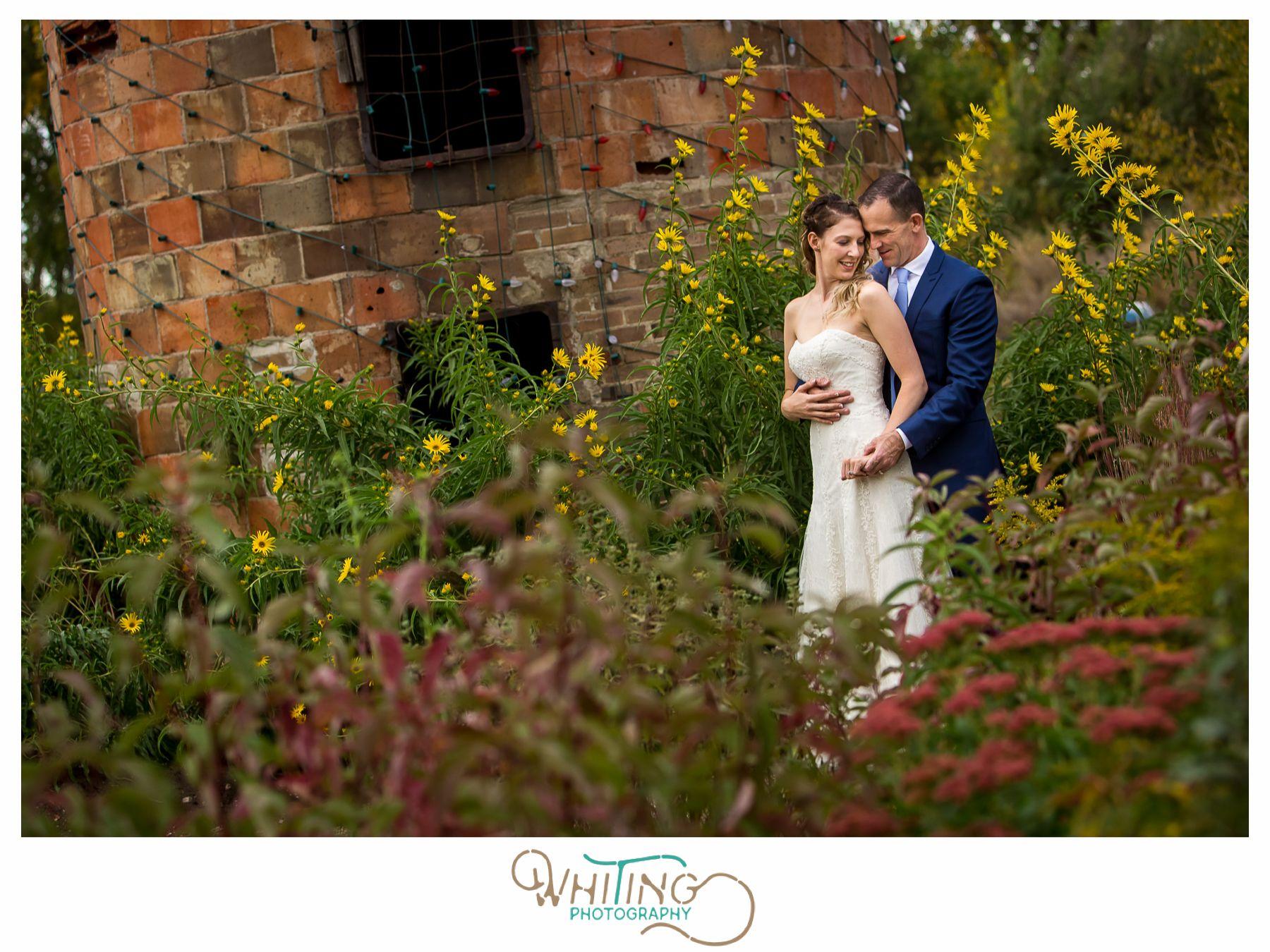 Denver & Estes Park Colorado Wedding Photos | Estes park