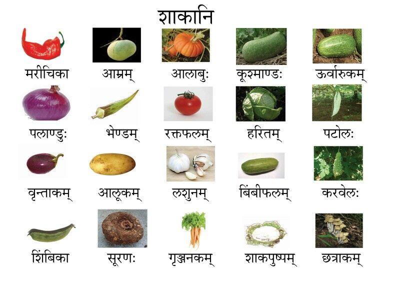 Vegetable Names In Sanskrit Vegetable Pictures Name Of