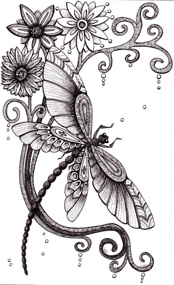Dragonfly And Bee – Pen And Ink Drawings. – Zentangle