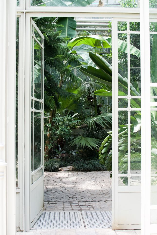 Lost in Plantation: Botanical Garden Belgrade · Happy Interior Blog