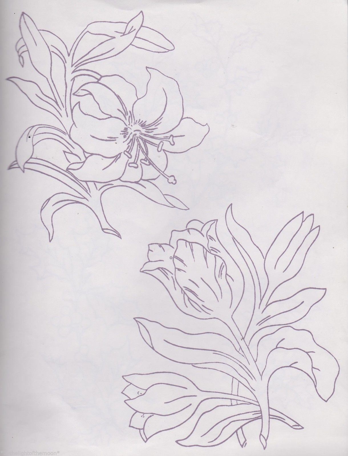 2 Various Flower Repeat Transfers For Embroidery Painting Freepost 1St