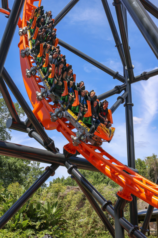 Tigris Roller Coaster At Busch Gardens