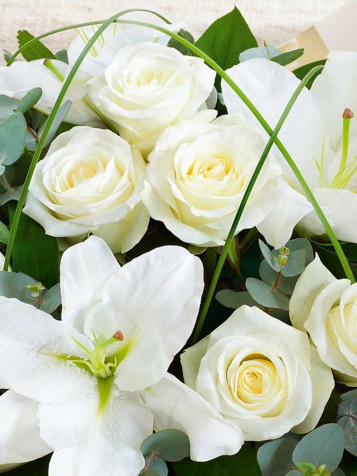 "Pannacotta: Preview ""Mother's Day bouquet"""