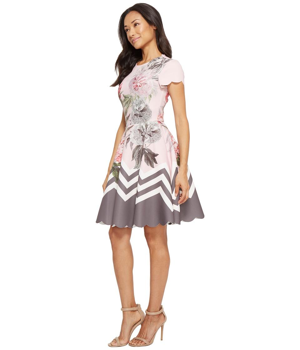 d37d3e377 Ted Baker Haiilie Palace Gardens Ruffle Skater Dress Women s Dress Dusky  Pink