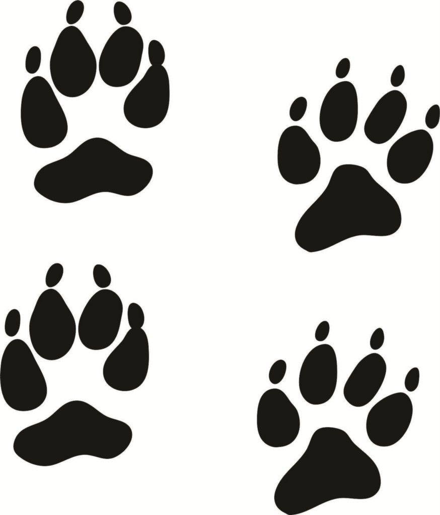 coyote tracks clipart 1 hunting cricut shirts pinterest cricut rh pinterest com dog racing clip art clip art dog tracks