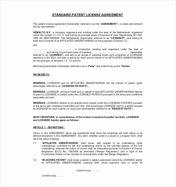 Example User Agreement Unique Licensing Agreement Template