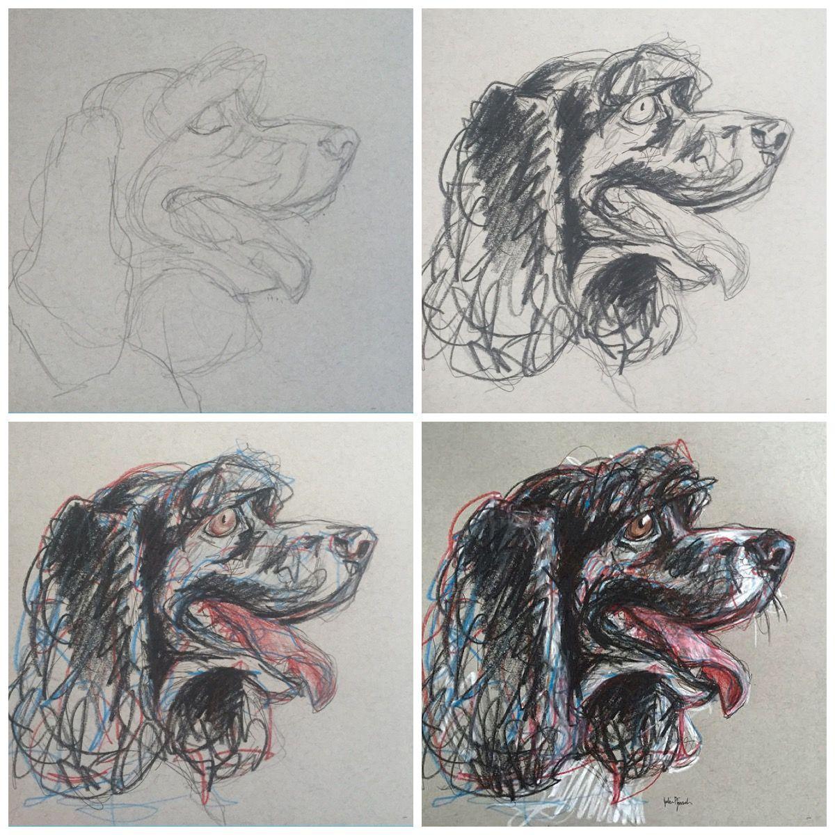 In progress photos of pet portrait sketch Pencil, pen and