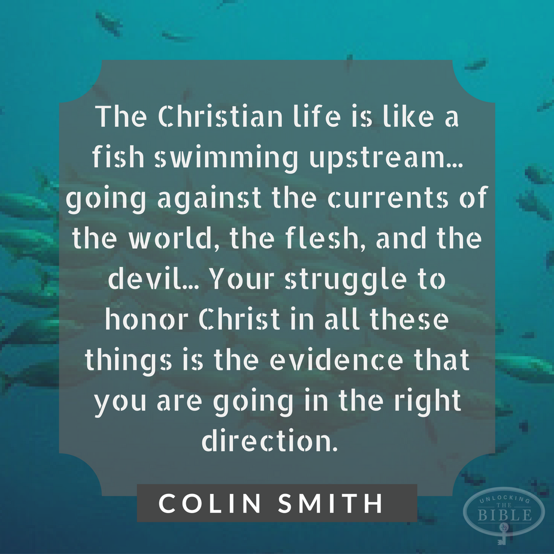 The Christian life is like a fish swimming upstream... going ...