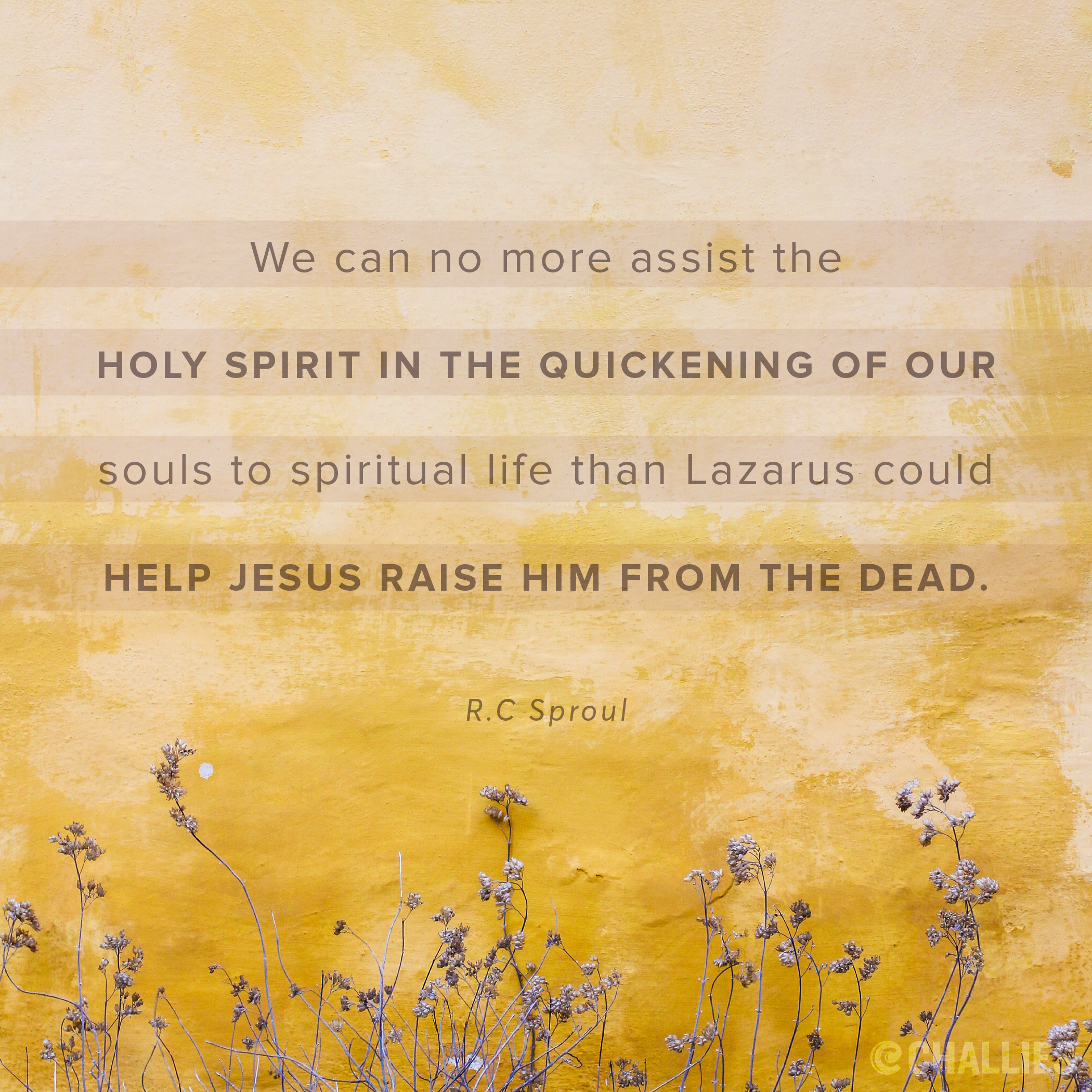 Spiritual Life Quotes We Can No More Assist The Holy Spirit In The Quickening Of Our