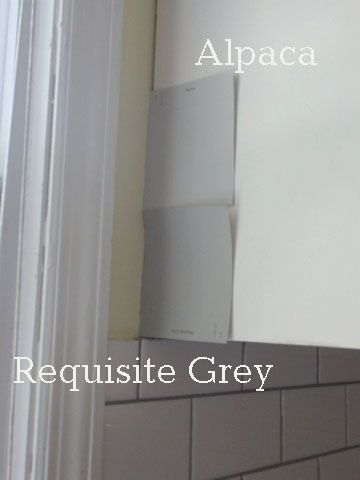 Sherwin Williams Alpaca Vs Requisite Gray