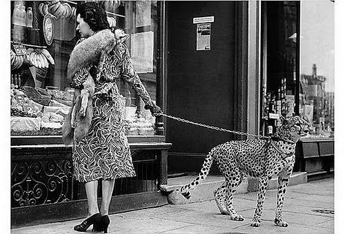 Phyllis Gordon takes her pet cheetah shopping in London in