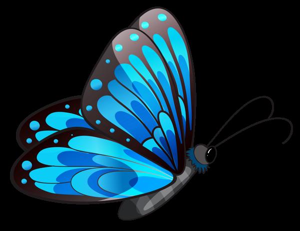 transparent blue butterfly png clipart mot le pinterest blue rh pinterest co uk free clip artbutterfly public free clip art butterflies black and white