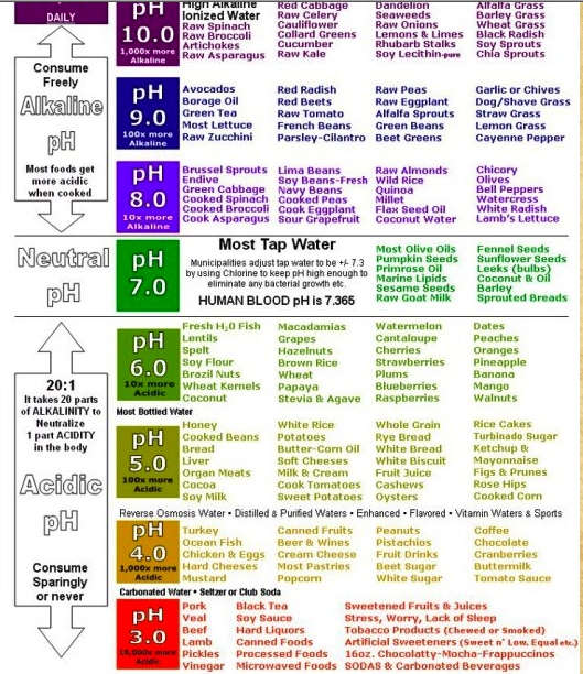 Ph Scale  Health Tricks  Information    Ph Health