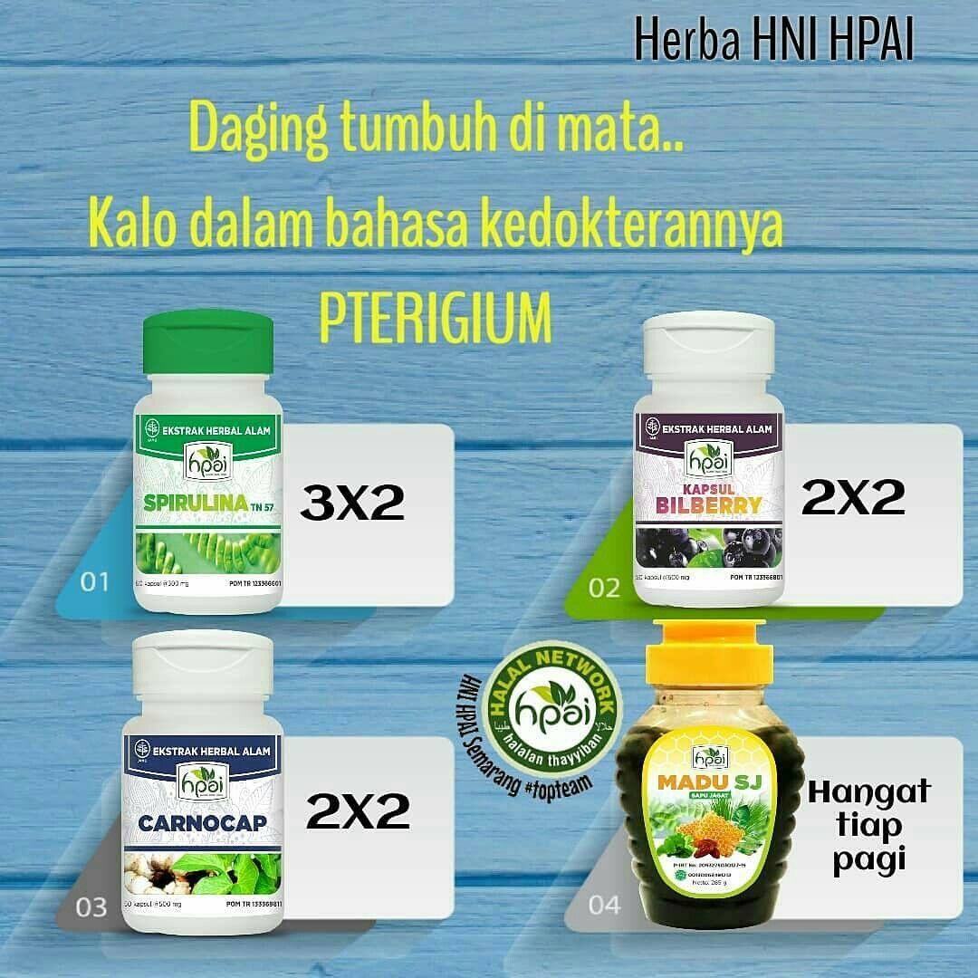 Resep Herba Pterigium Herba Obat Alami Herbal