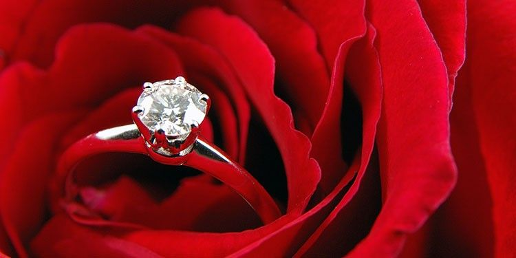 diamond engagement ring on a red rose - diamond engagement ring guide