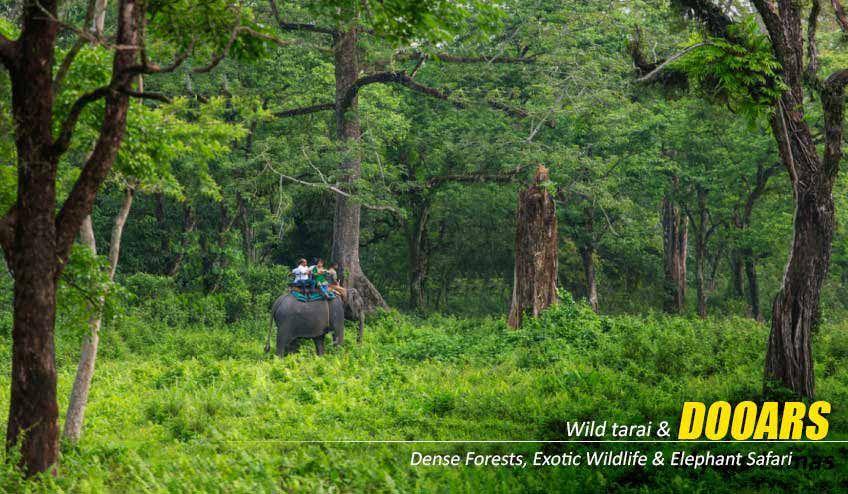 Weekend Destinations Near Kolkata In Monsoon Luxury Resort Resort Mayfair Hotel