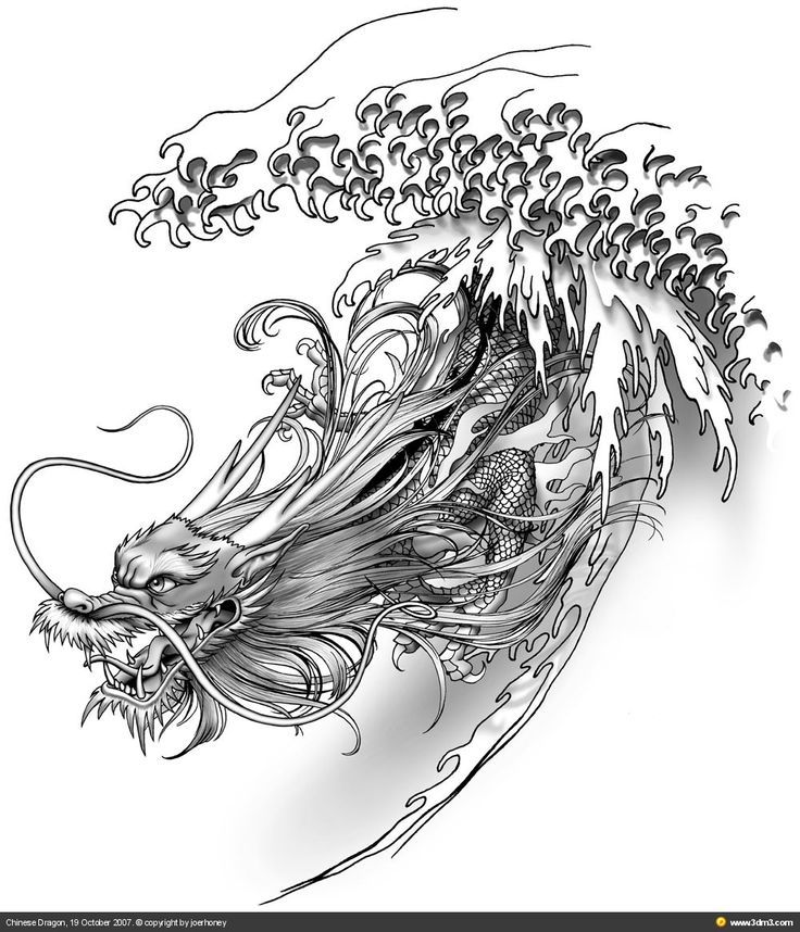 illustrated chinese dragon google search