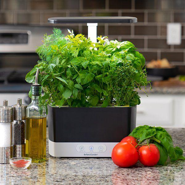Week 1 Indoor Gardening 101 Indoor Gardening Month 640 x 480