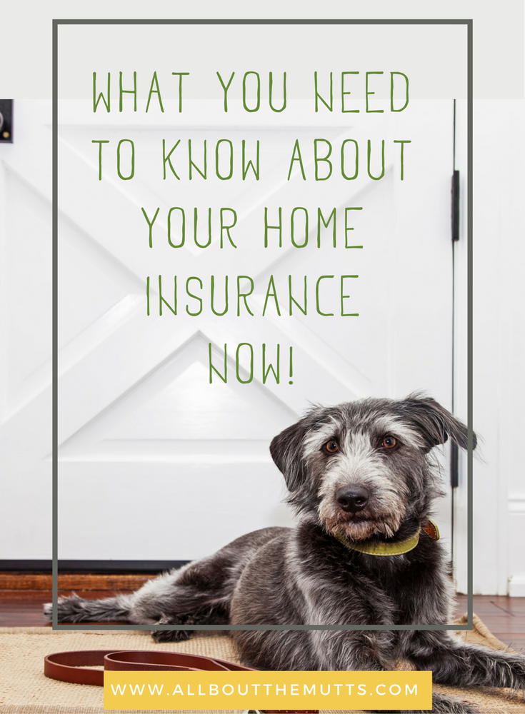 Check Your Home Insurance Policies Now What You Need To Know