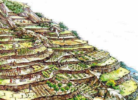 Andenes Incas Imperio Incaico Imperio Inca Inca