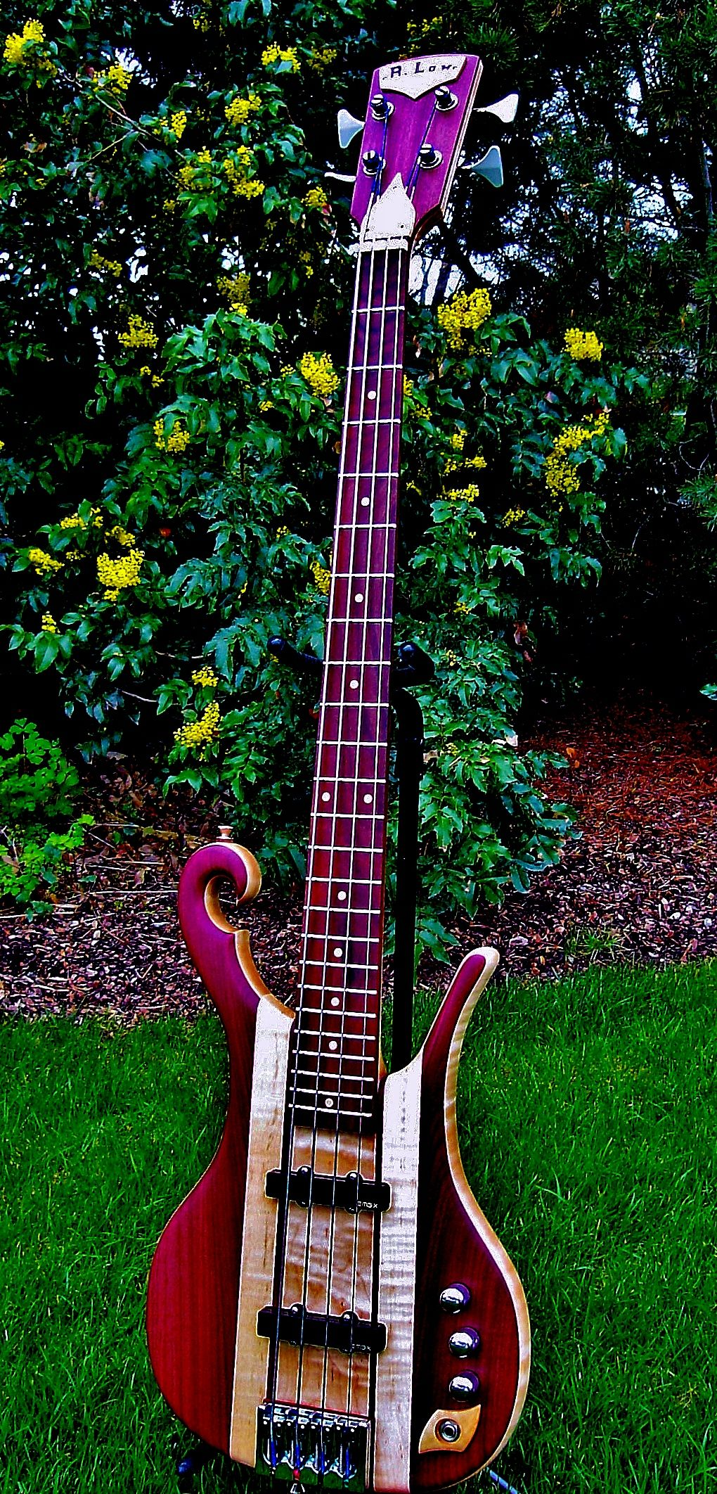 Purple Heart Bass Bass Guitar In 2019 Music Guitar