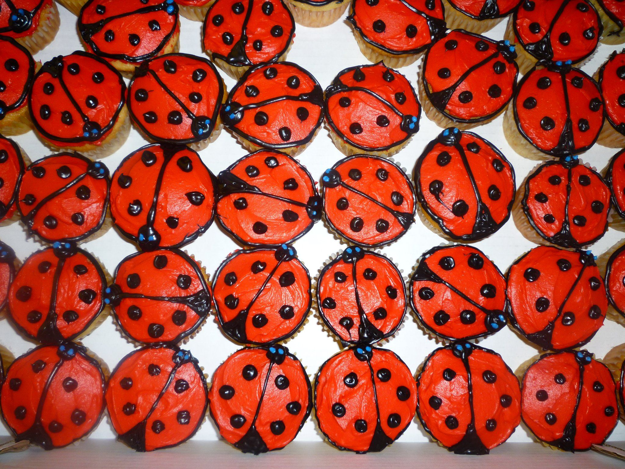 ladybug cupcakes cake, cookie, and cupcake decorating ...