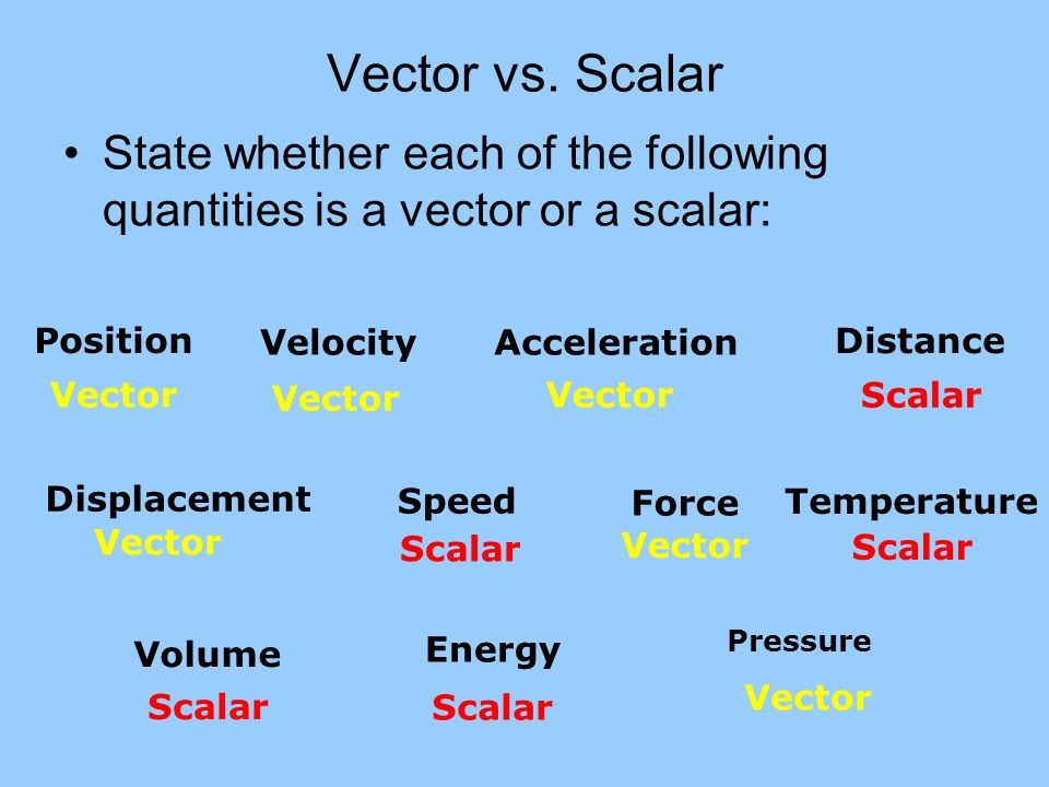 vector vs. scalar state whether each ... | introduction to physics, physics,  classical mechanics  pinterest