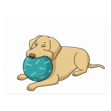 yellow lab cartoon with ball postcard - postcard post card postcards unique diy cyo customize personalize