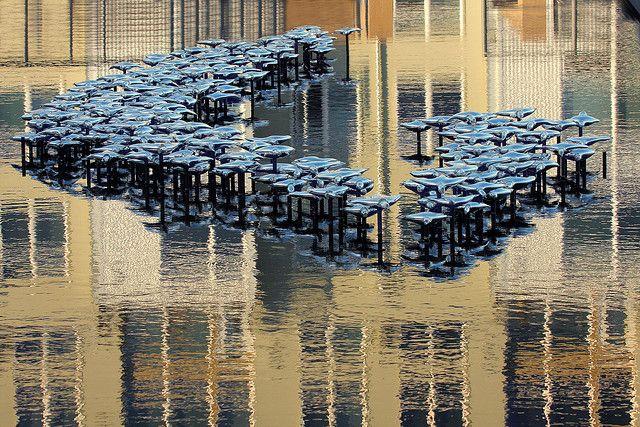 Glass Museum Reflection Pool, Tacoma, Washington