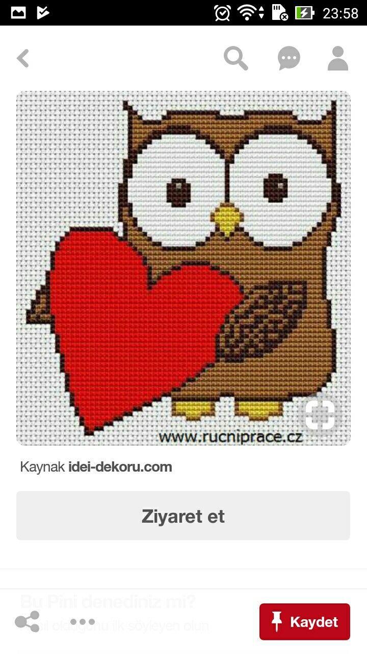 Pin de Elif Şeker Güner en Owl and birds | Pinterest
