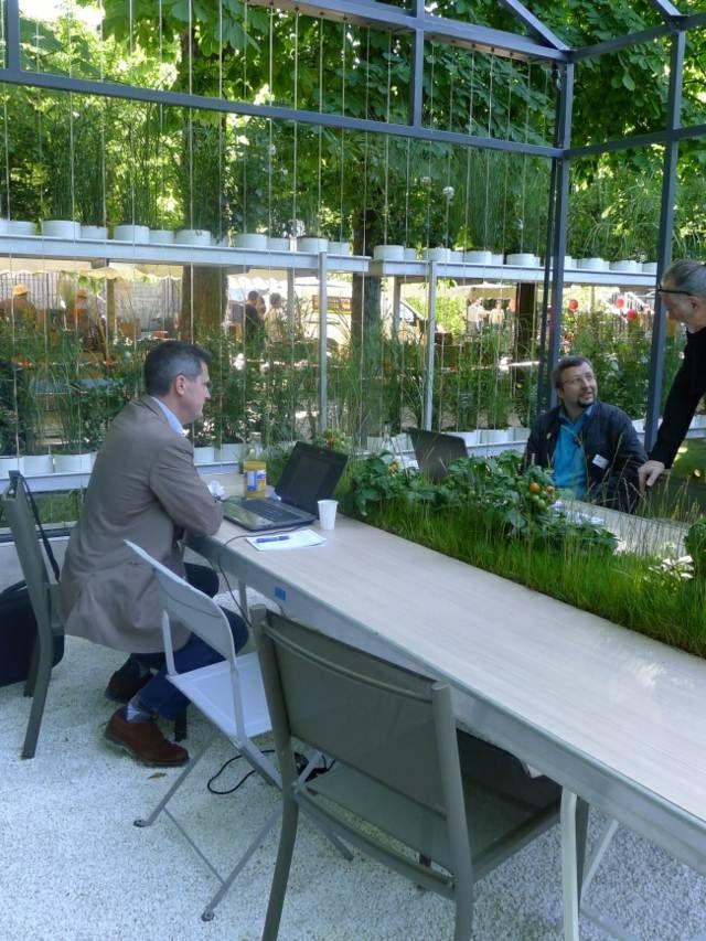 Aménagement de plantes d\'intérieur pour le bureau de travail ...