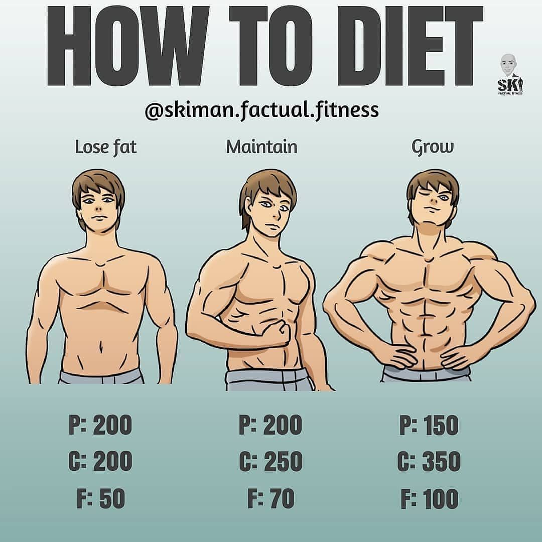 HOW TO DIET by @skiman factual fitness Getting the questions