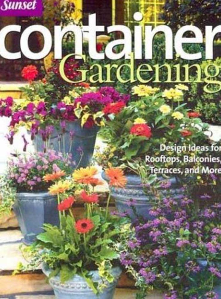 container gardening design ideas for rooftops ba rh pinterest com au