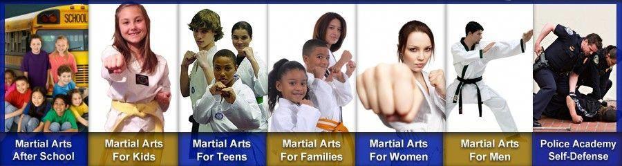 American dragon martial arts academies is a taekwondo