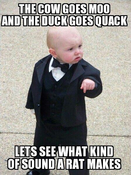 Boss Baby Funny Babies Baby Memes Teacher Humor