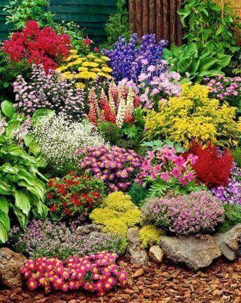 Wow What A Bright Border Garden Inspiration Beautiful Gardens Flowers Perennials