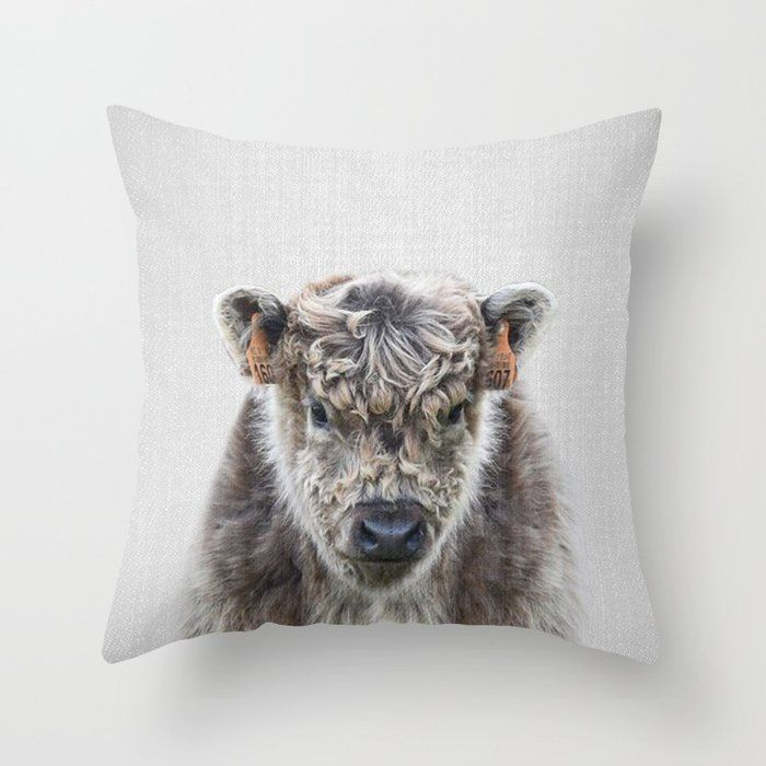 Fluffy Cow Colorful Throw Pillow By Galdesign Pillow Photography Animal Farm Wild Modern Colorful Throw Pillows Throw Pillows Animal Throw Pillows