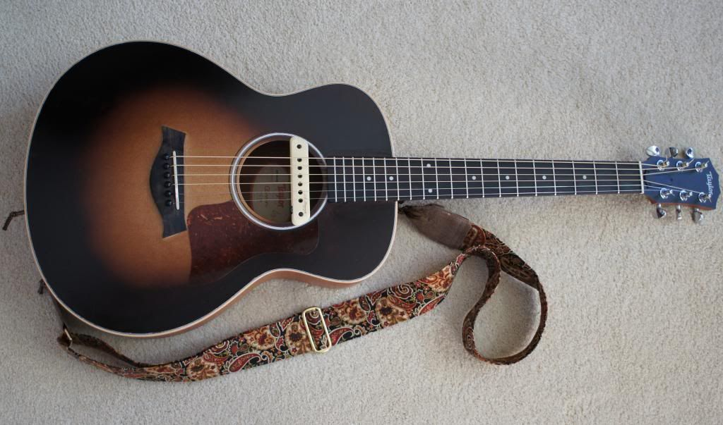 The Official Gs Mini Upgrades Mods Customizations Thread Mini Guitar Mod