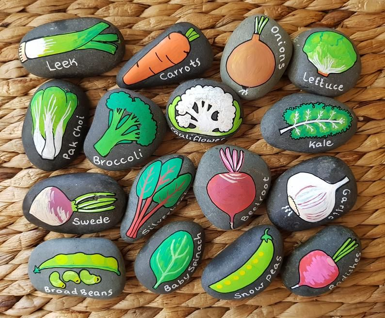 Set of 8 Winter Vegetables Seedling Markers Hand Painted Rocks