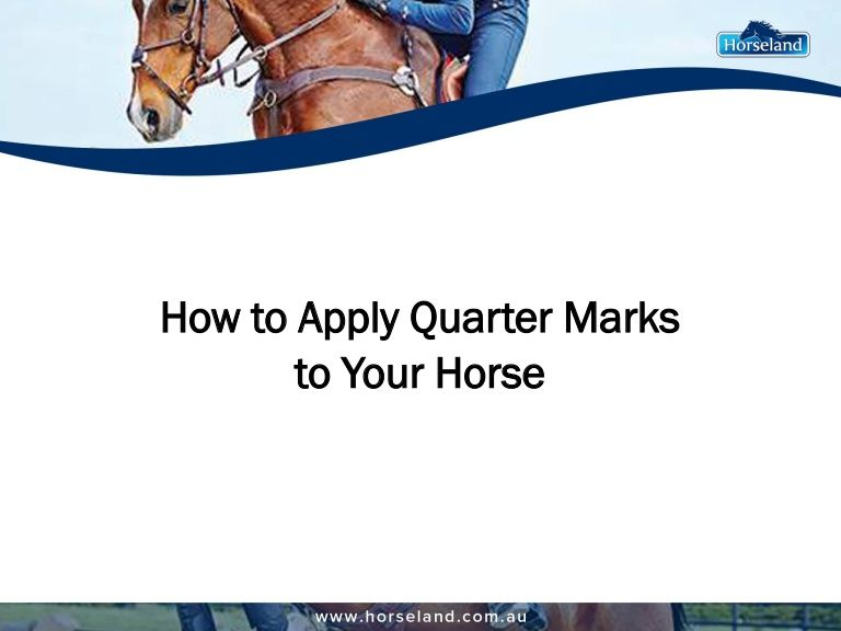 Give your horse a touch of personal style by applying quarter marks days before the show. #quartermarks #horse #equestrian