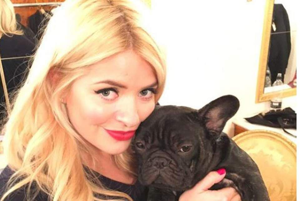 Holly Willoughby With French Bulldog Benny French Bulldog