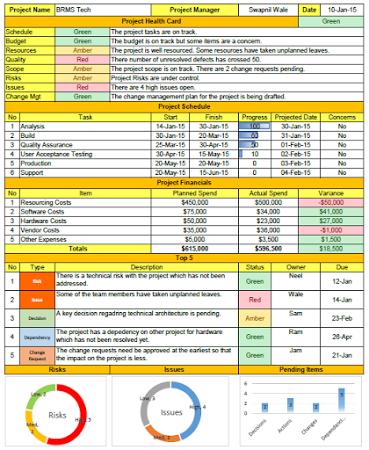status report format