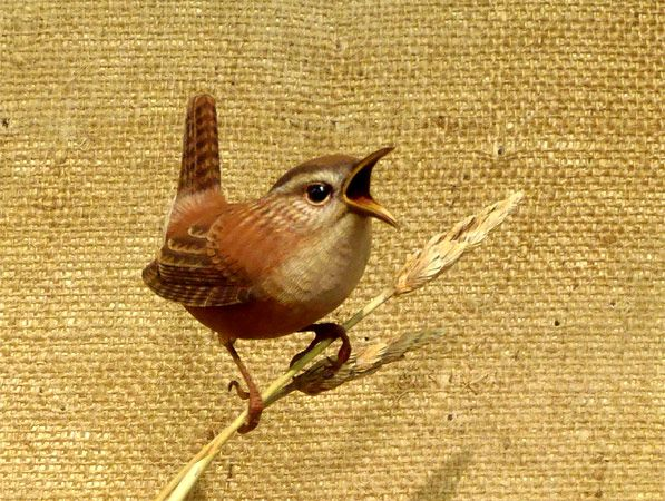 Marsh Wren - carved by Greg Pedersen