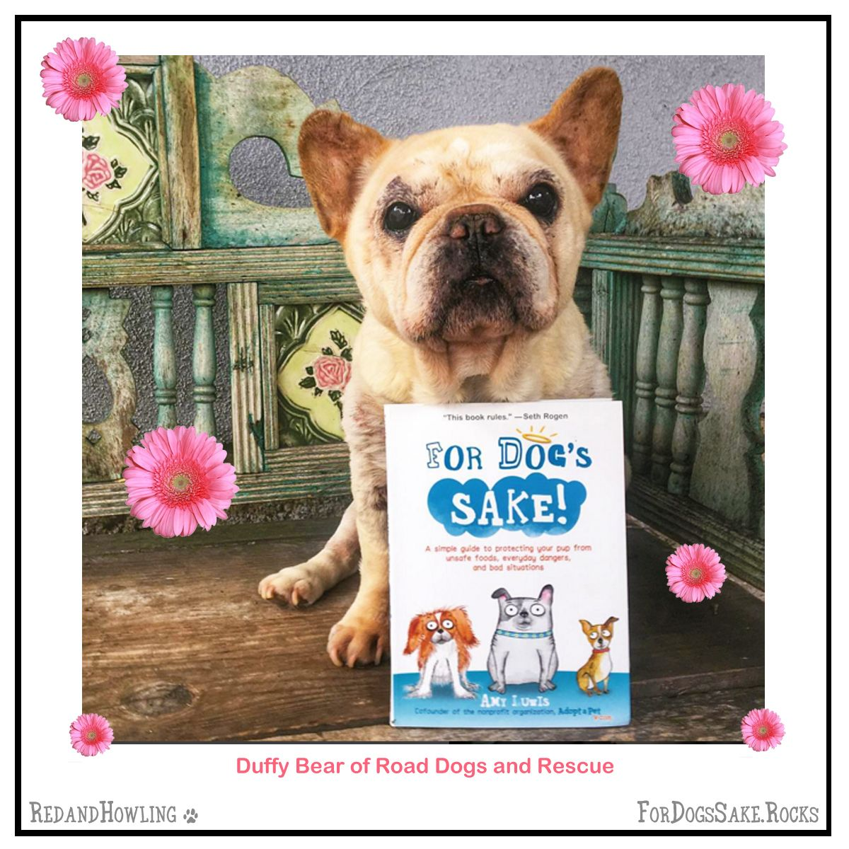 Buy For Dog S Sake And A Donation Is Made To Adopt A Pet Com