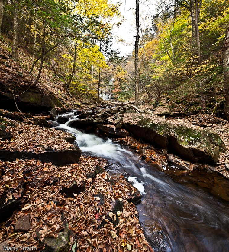 Ricketts Glen State Park PA Ricketts Glen